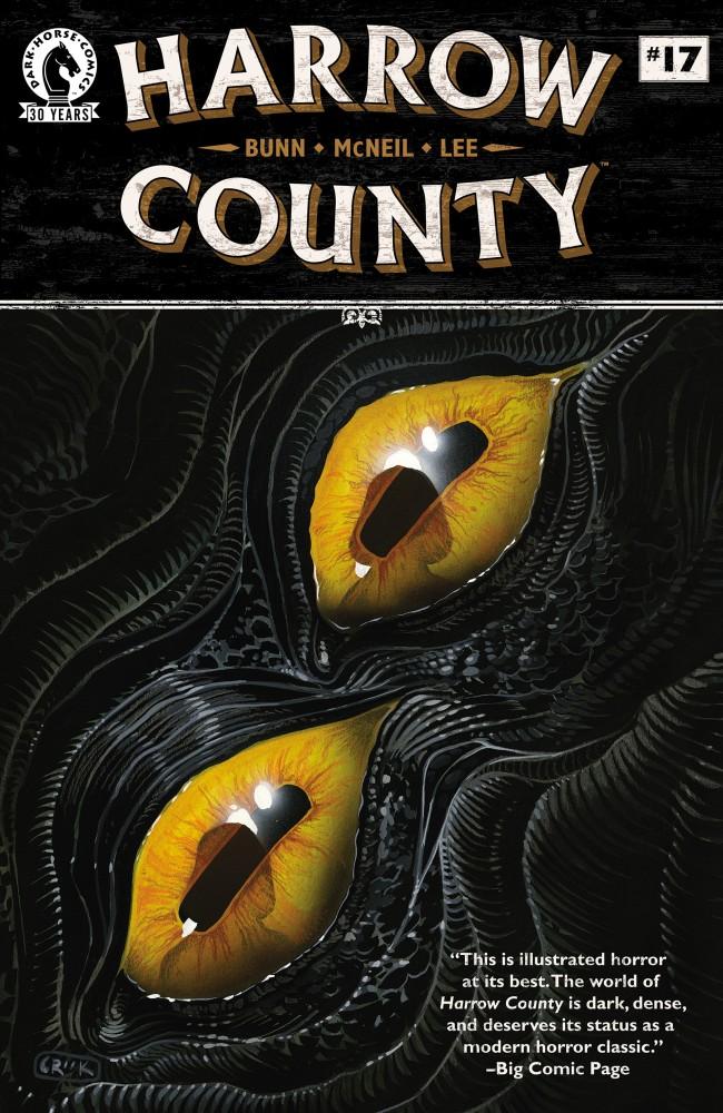 Download Harrow County #17
