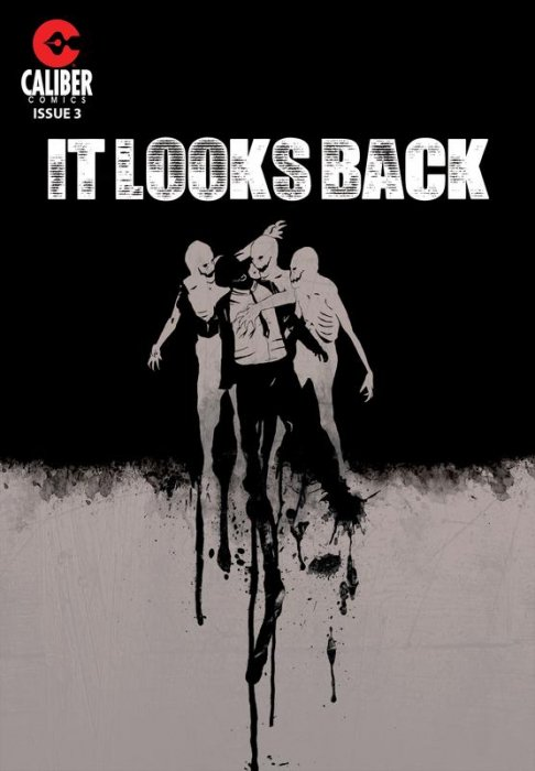 It Looks Back #3