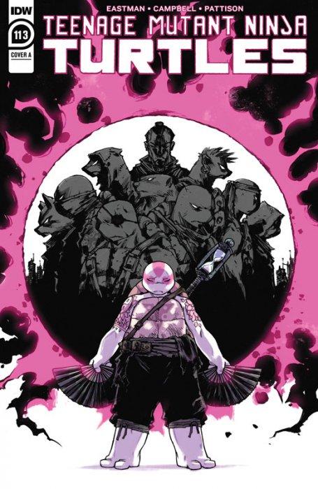 Teenage Mutant Ninja Turtles #113